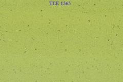 TCE-1565