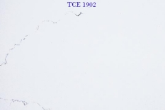 TCE-1902
