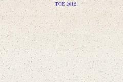 TCE-2012