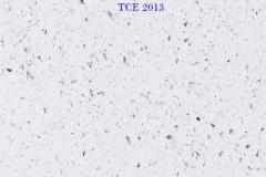 TCE-2013